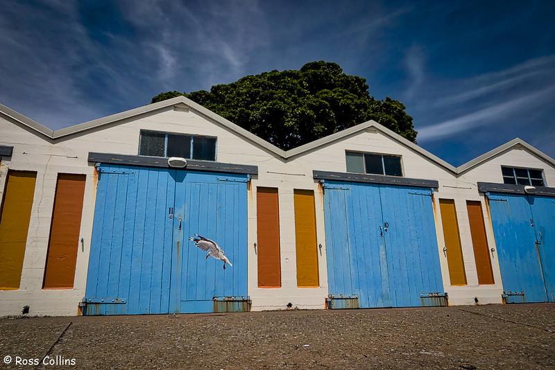 Boatsheds, Royal Port Nicholson Yacht Club
