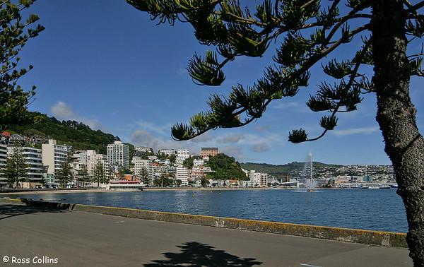 Oriental Bay