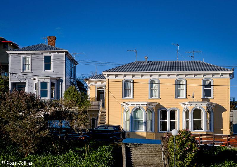 Early Wellington houses, Daniel Street, Newtown