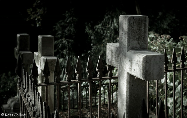Bolton Street Cemetery Wellington, May 2012