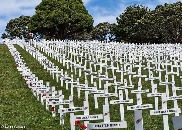 Field of Remembrance, Wellington Botanic Garden, 24 April 2018