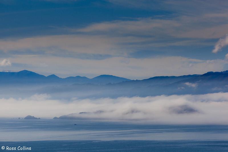 Fog Descends on Wellington, 3 May 2011