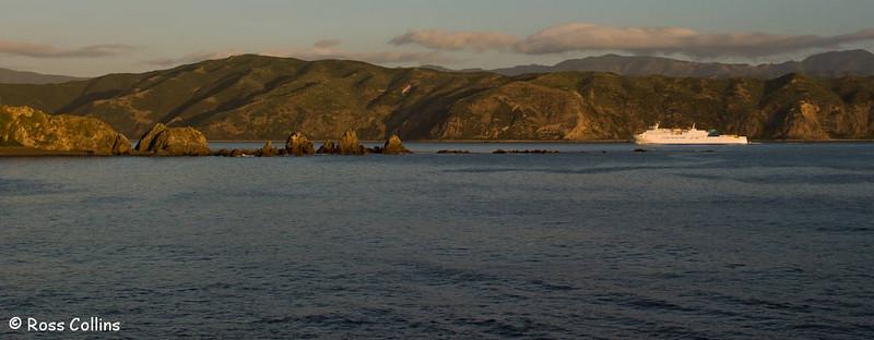 Wellington's Last Sunset for 2005