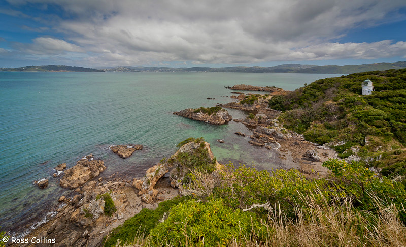 Matiu/Somes Island, Wellington Harbour, 24 January 2012
