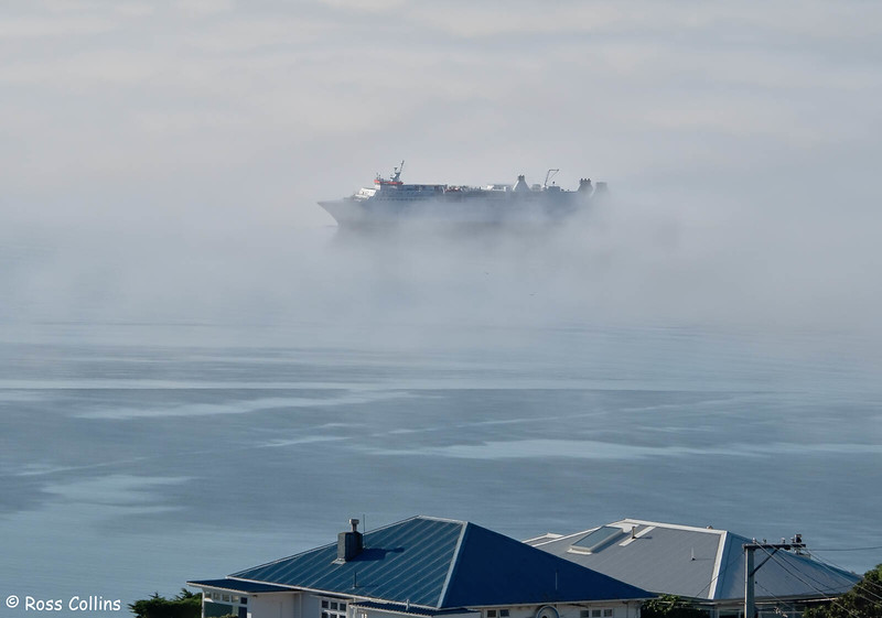 Sea Fog over Wellington Harbour, 23 June 2020