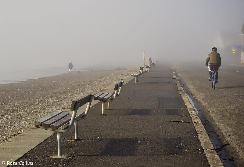 Sea Fog in Wellington, 22 July 2019
