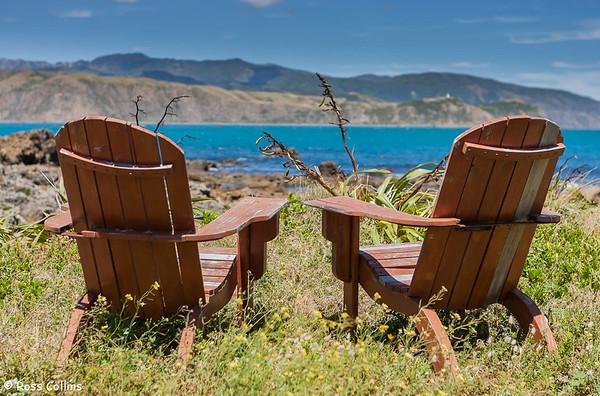 Seats in the City - Wellington