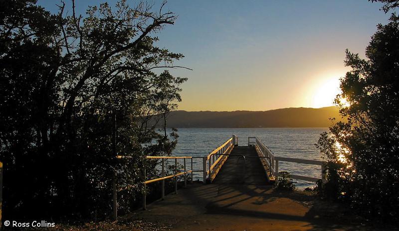 Wellington's Eastern Bays