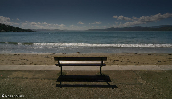 Wellington's Eastern Bays