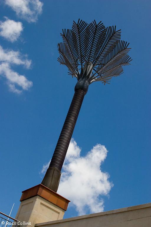 Wellington, Looking Up