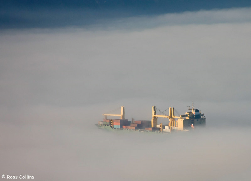 Wellington in the Fog, 1 July 2006