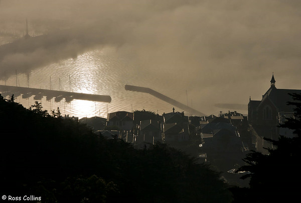 Wellington in the Fog, 1 July 2006