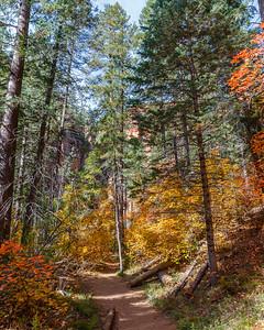 Oak Creek West Fork 2014-1