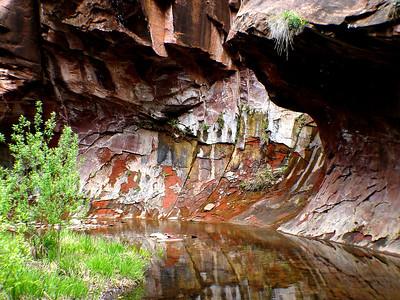 2004-02505 West Fork of Oak Creek Oak Creek Canyon Arizona