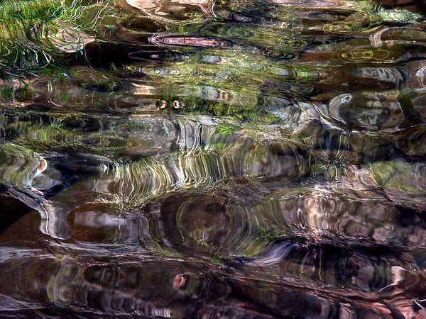 Waterfowl swimming upstream sent these lazy ripples towards me creating this interesting abstract reflection.