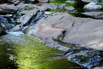 The creek, gilded by the late afternoon sun and foliage, courses through rocks worn smooth over eons of time. West Fork of Oak Creek, Arizona