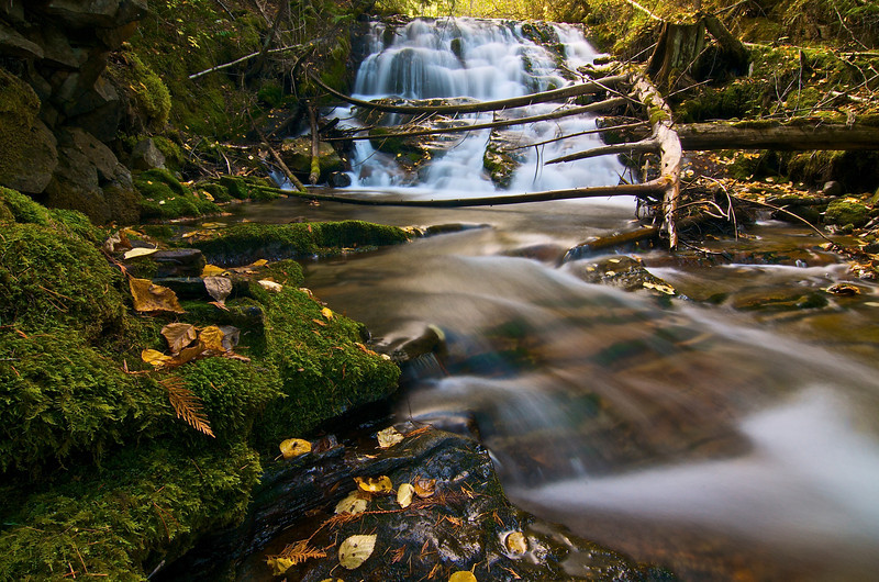 Fletcher Creek, near Kaslo, BC