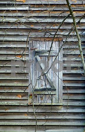 P1030721 Tree Filigree on Mill Door levels1