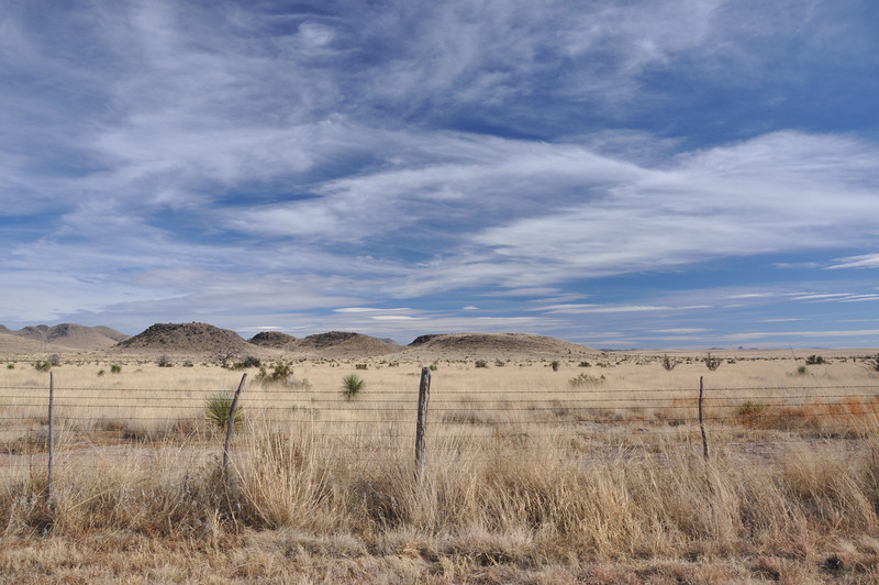 There is almost nothing out here but vast plains and blue sky, and a few fence posts.