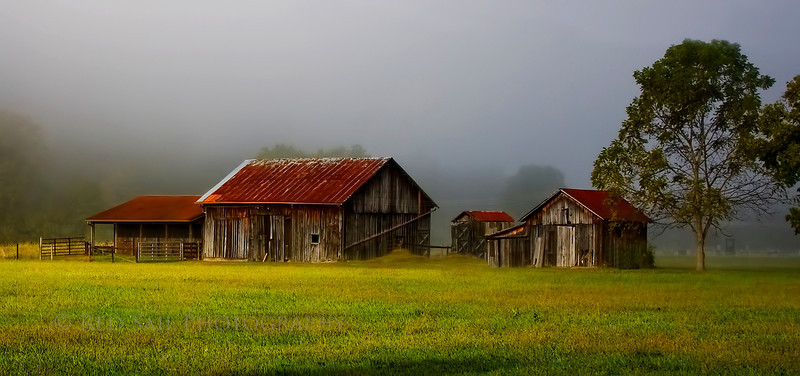 West Virginia Farm in the fog.
