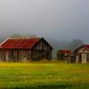 West Virginia Farm in the fog.