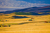Montana, Ennis, Sunrise, 蒙大纳,黄石公园,  日出,风景