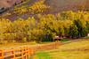 Montana, Metcalf Wildness,  Fall Colors, 蒙大纳,高原风光, 秋色
