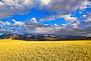 Montana, Metcalf Wildness, Koch Peak, 蒙大纳,高原风光