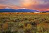 Idaho, Saddle Mountain, Henrys Lake, Dawn, 爱达荷,高原风光, 黎明