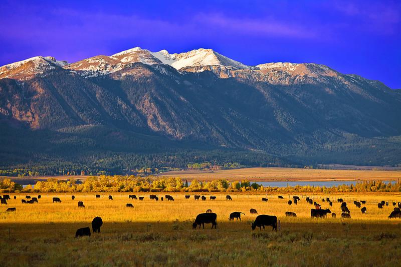 Idaho, Saddle Mountain, Henrys Lake, 爱达荷,高原风光
