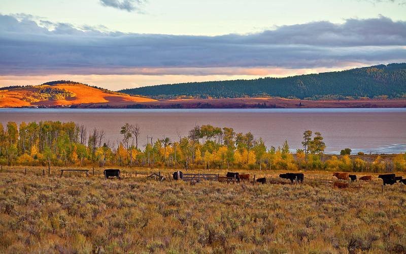 Idaho,, West Yellowstone, Henry's Lake, Sunset, I爱达荷,黄石公园,  日落,风景
