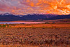 Montana, West Yellowstone, Henry's Lake, Sunset, 蒙大纳,黄石公园,  日落,风景