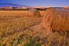 Montana, Ennis, Hay Rolls, Sunrise, 蒙大纳,黄石公园,  日出,干草卷, 风景