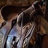 Westcliffe Horses #4564