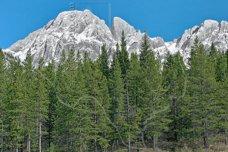 Rocky Mountain Scenery along Highway 40,<br /> Mount Blane (left) and The Blade (center),<br /> Kananaskis Country, Alberta, Canada