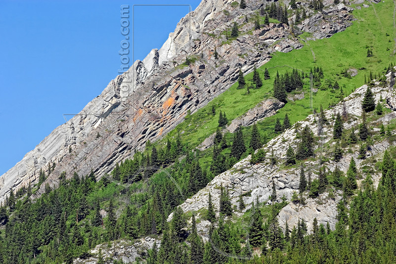 Mountain Side,<br /> Kananaskis Country, Alberta, Canada