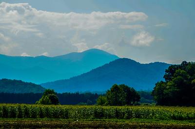 Western Carolina
