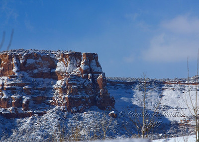 Colorado National Monument as seen from my back yard.
