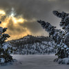 Winter in Yellowstone National Park #4