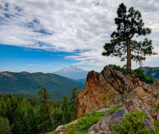 Mount Shasta View, California