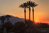 Sunset in Indian Wells, CA