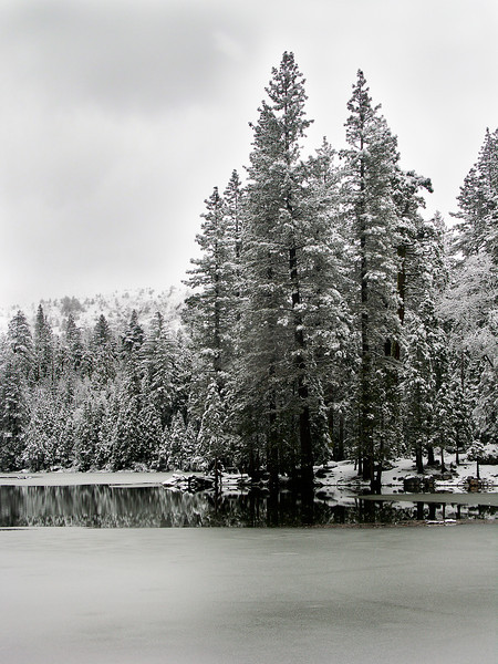 Fuller Lake in Winter, CA.