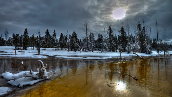 Winter in Yellowstone National Park #1