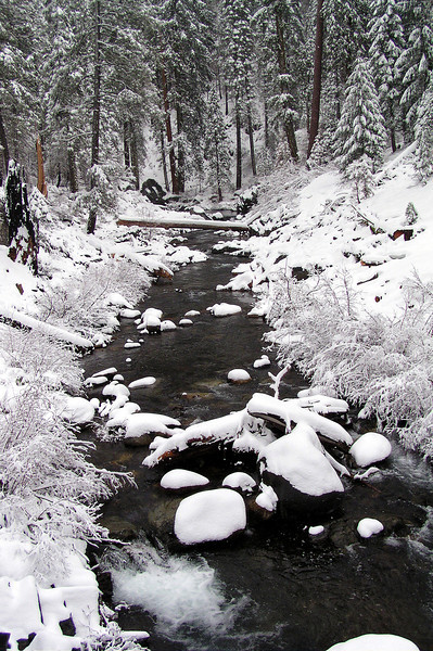 Duncan Creek in the Snow