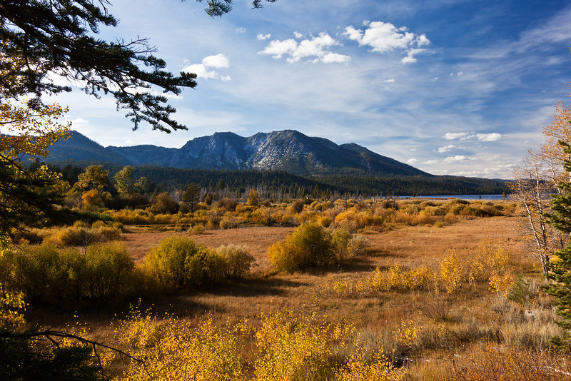 Autumn in Tallac State Park, Lake Tahoe,CA