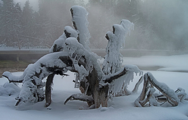 Ice Sculptures, Yellowstone National Park