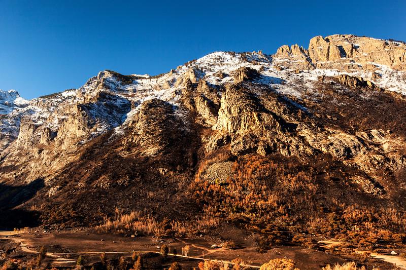 Ruby Mountains Autumn 3_7437