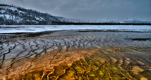 Winter in Yellowstone National Park #2