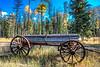 Old Log Wagon near Condon Montana IV