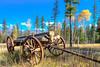 Old Log Wagon near Condon Montana III
